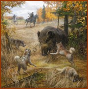 Обитатели рязанских лесов
