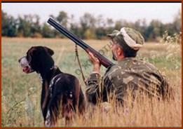 Разведение благородных оленей